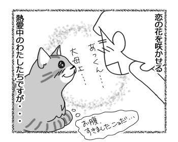 25082016_cat2.jpg