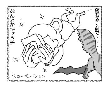 27082016_cat3.jpg