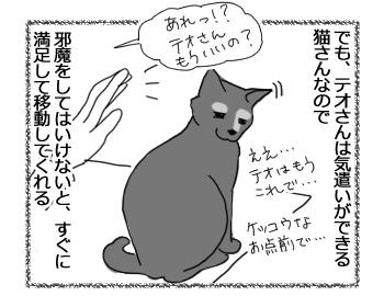 28062016_cat2.jpg