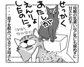 28062016_cat4.jpg