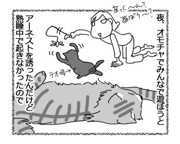 28072016_cat2.jpg