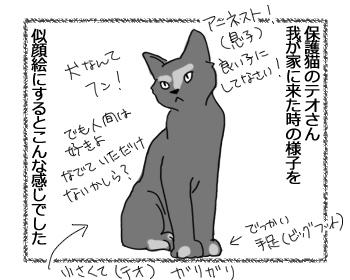 30052016_cat1.jpg