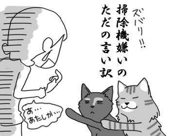 30072016_cat6.jpg
