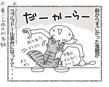 30092016_cat3.jpg