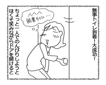 31052016_cat2.jpg