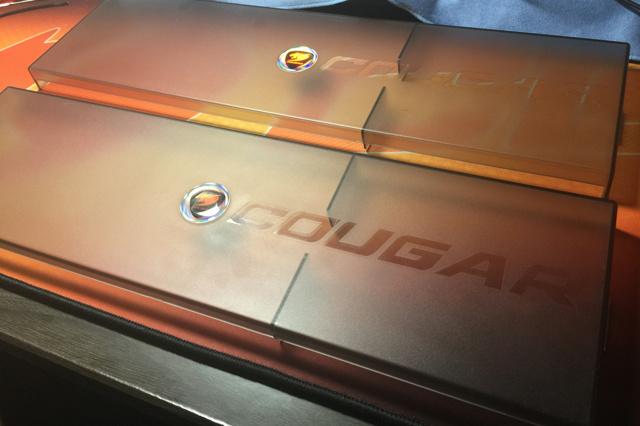 COUGAR_ROOF_01.jpg