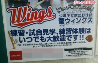 菅ウィングス