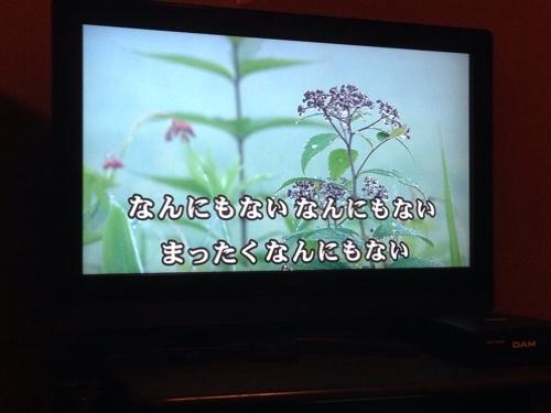 fc2blog_2016050506415716a.jpg